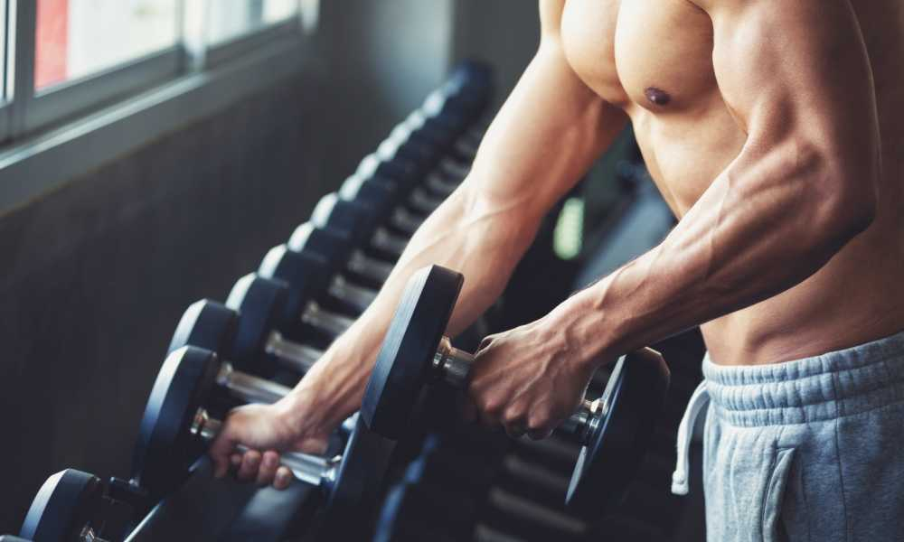 Best Way to Build Muscle The Complete Guide to Bulking Up