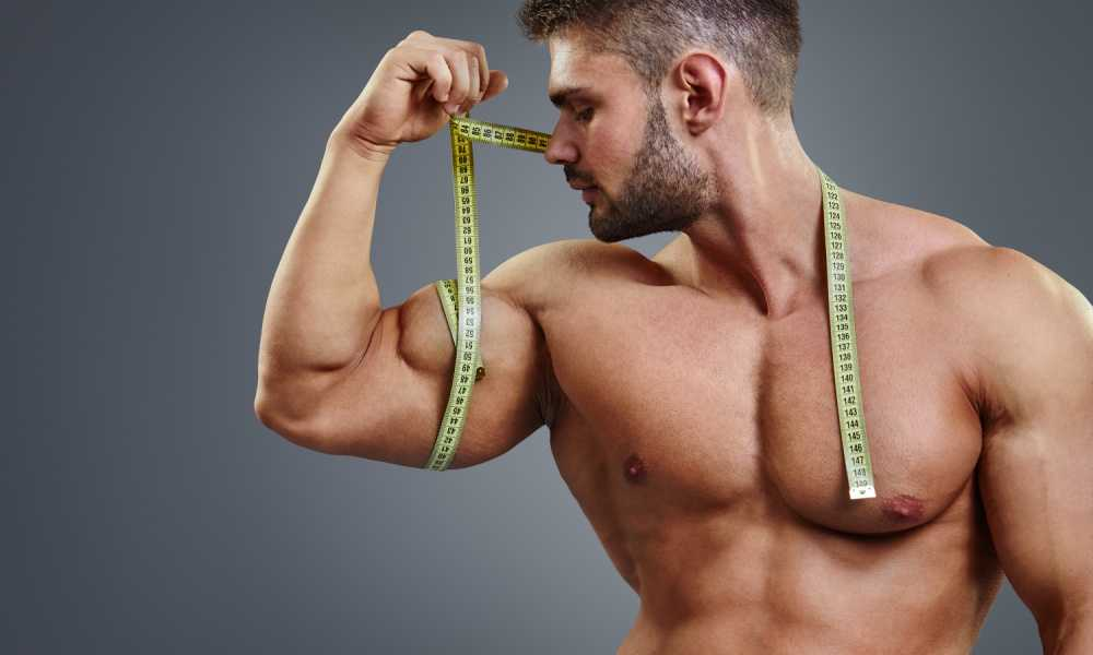Tips for Gaining Muscle the Correct Way