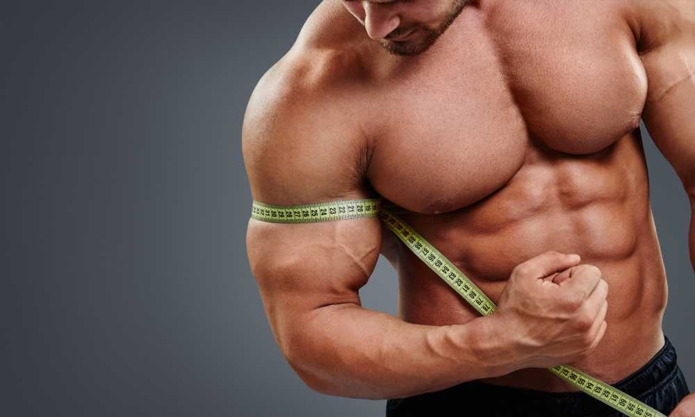 Types of Muscle Growth Understanding Hypertrophy and More
