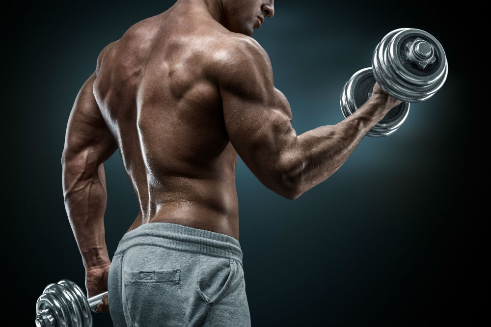 How Many Exercises Per Muscle Group Are Sufficient