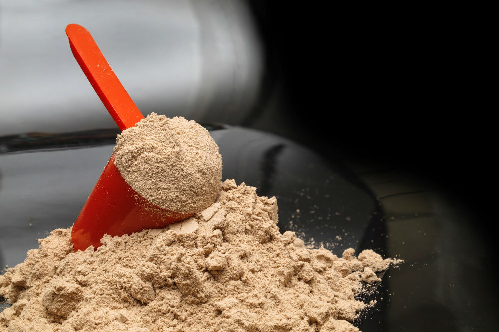 Best Muscle Gain Protein Powder for Bodybuilding